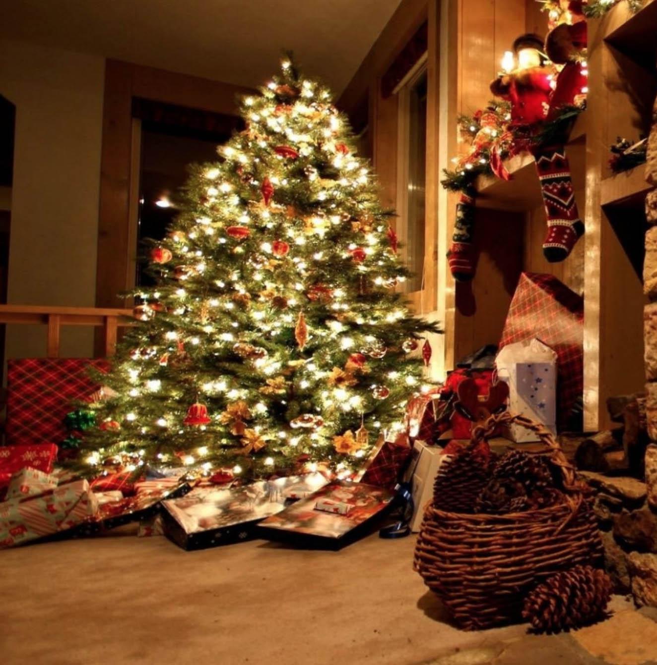 Image result for новогодняя ёлка